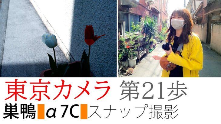 【SONY a7C】東京カメラ021『巣鴨、SONY α7Cでスナップ撮影』~パティスリー・Hiyamaの極スフレチーズはうまい!~実践レビュー 写真家/加藤ゆかの東京スナップ
