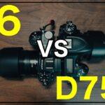 【Z6とD750】どちらがおすすめ?カメラ比較して自分に合うのはどれ?