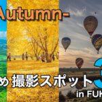【インスタ映え】秋に写真を撮るのにおすすめな福岡絶景スポット3選