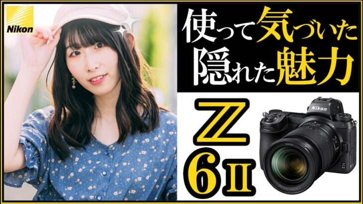 ニコン Z6II ミラーレス一眼カメラ 徹底レビューと勧める理由 【写真と動画にオススメな機材の選び方】